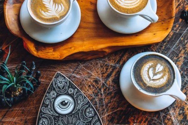 coffee hound sparkle lattes